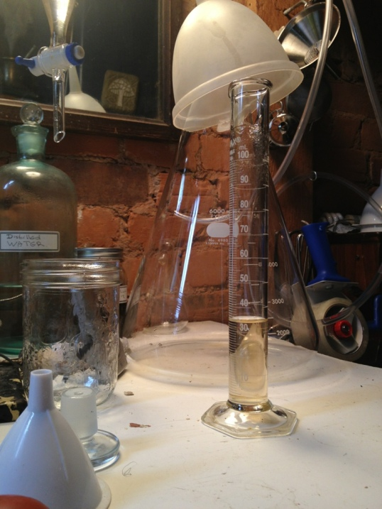 Distilled Frankincense essential oil. Boswellia Rivea. 2013, Home made still.